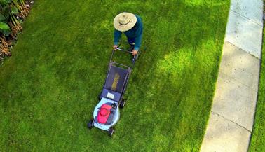Les paysagistes fran ais bourgoin jallieu for Entretien jardin valence
